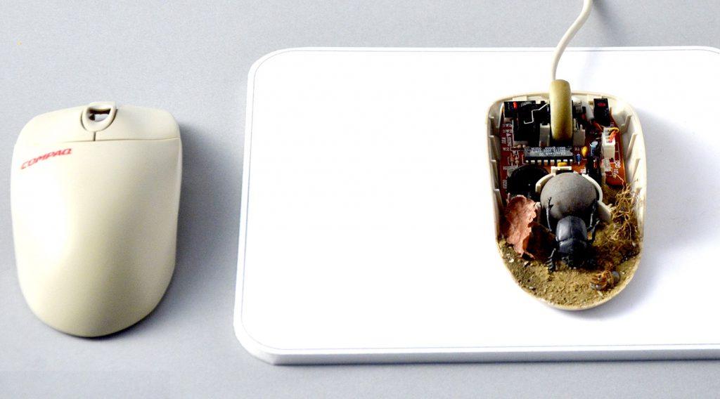 フンコロガシマウス